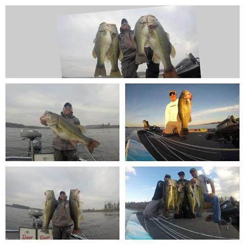 Casey Martin Fishing