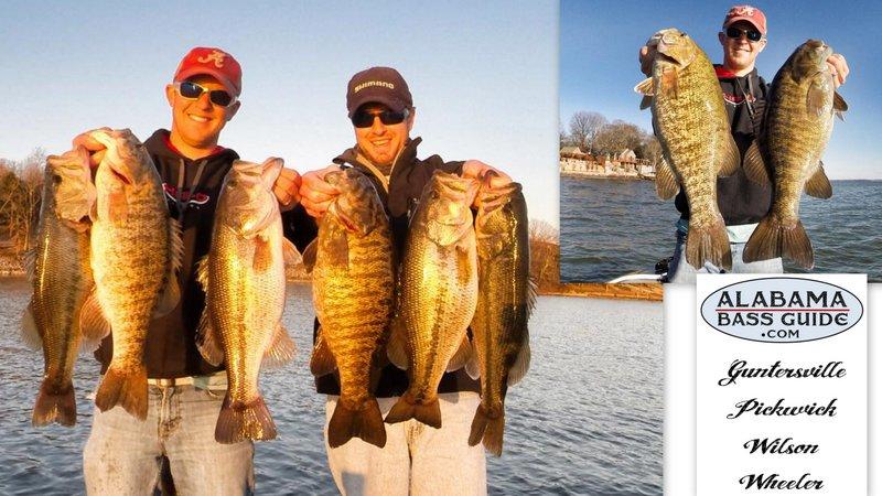 Alabama Bass Trail Wilson Lake