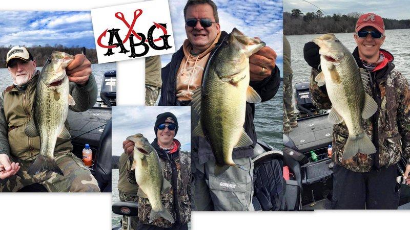 Alabama Bass Guide